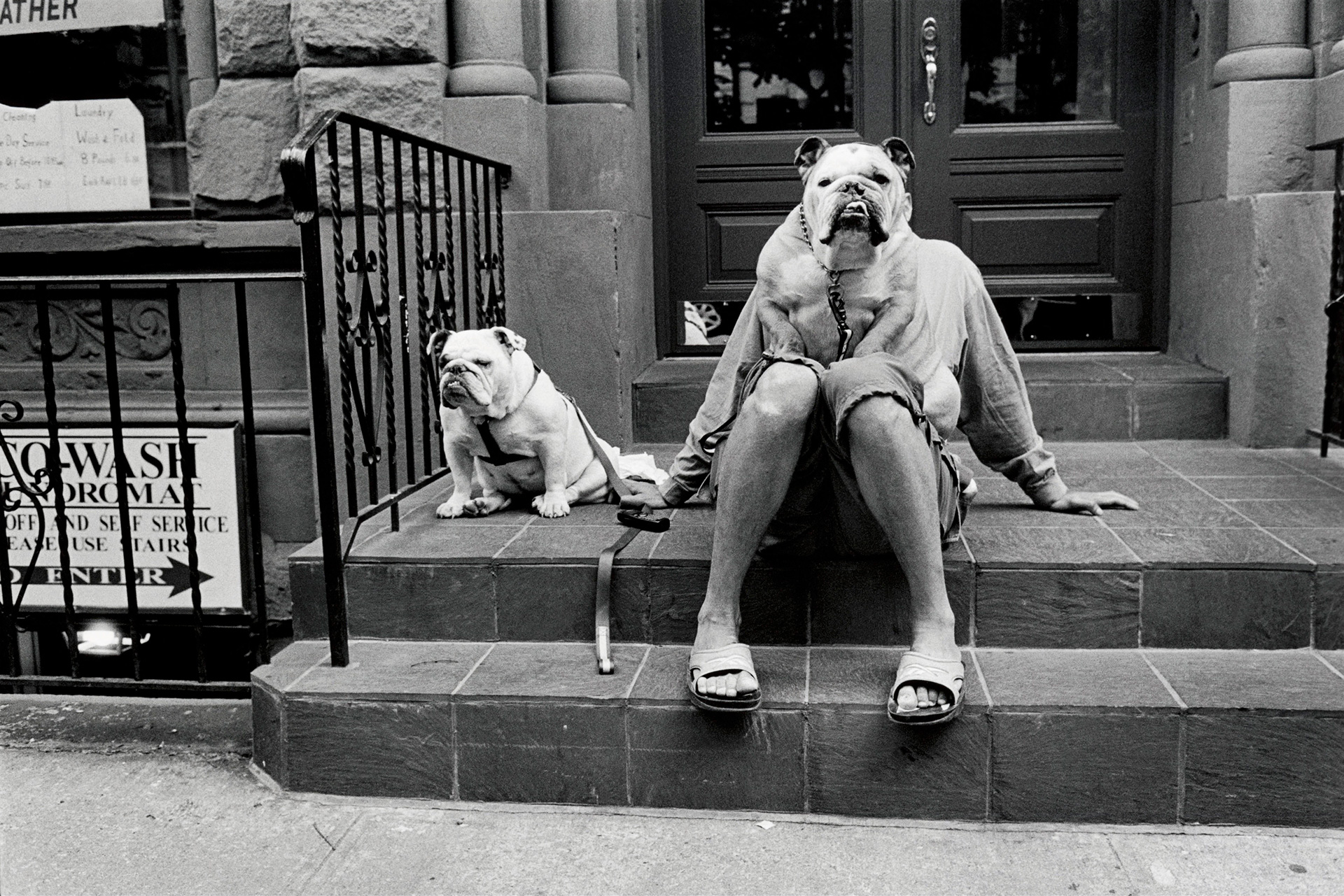"Elliott Erwitt ""USA. New York City. 2000."""