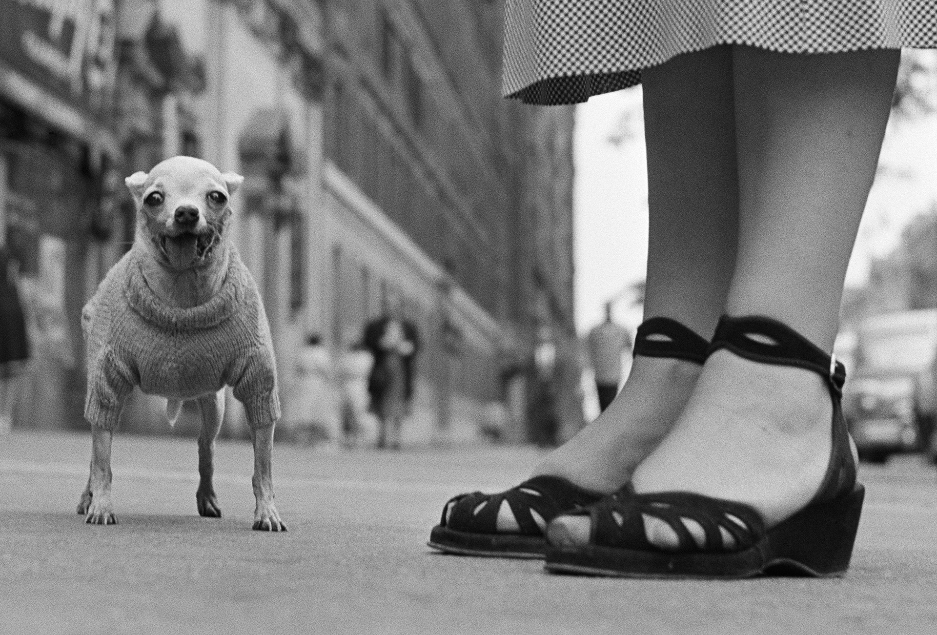 "Elliott Erwitt ""USA. New York City. 1946"""
